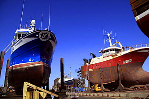 Two fishing vessels in Fraserburgh drydock undergoing hull repairs. May 2009. - Philip Stephen