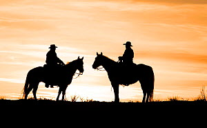 Silhouette of two cowboys at sunset, Flitner Ranch, Shell, Wyoming, USA Model released - Carol Walker