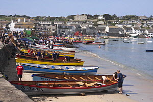 Cornish Pilot Gigs pulled up on Town Beach, St. Mary's, Isles of Scilly. World Pilot Gig Championships, May 2009. - Merryn Thomas