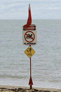 Warning signs on a beach in Australia, advising people not to swim in the water due to risk of jellyfish stings.  -  Juergen Freund