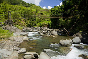 River and bridge in Banaue Rice Terraces, Philippines. In the foreground, a device can be seen that uses water to pull a long line going up to the rice fields to wave a the flag that frightens away bi... - Jurgen Freund