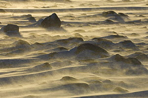Snow blowing over rocks, sunset. Canadian arctic  -  Warwick Sloss