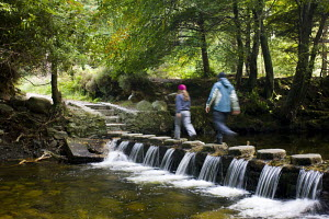 Walkers crossing stepping stones over a cascading stream in Tollymore Forest Park, County Down, Northern Ireland.  -  Adam Burton