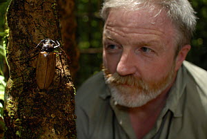Dr. George McGavin in rainforest with Giant Longhorn Beetle (Cerambycidae), BBC Expedition Borneo, Sabah, Malaysia. April 2006.  -  Tim Martin