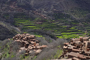 Villages and terraces, Azzadene Valley, High Atlas Mountains, Morocco. March 2006. - Tim Martin