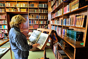 Visitor reading at the Library De Beauvoir, where the archives of the island are maintained, St Peter Port, Guernsey, Channel Islands. May 2009.  -  Eric Baccega