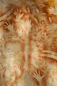 "Aboriginal rock art with many human hands, at a site called ""The Art Gallery"", Carnarvon Gorge, Carnarvon National Park, Queensland, Australia - Tim Laman"
