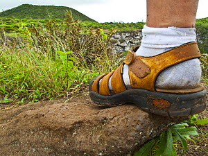 Close up of foot of a hiker on the caldera rim of Los Gemelos, Santa Cruz Island, Galapagos, January 2009. Model released. - Juan Carlos Munoz