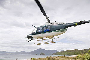 Helicopter for transporting wildlife rangers, leaving Codfish Island, off Stewart Island, southern New Zealand, the main home of the endangered Kakapo, January 2009 - Mark Carwardine