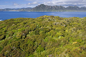 Aerial view of Codfish Island looking north towards Stewart Island, off southern New Zealand, main home of the endangered Kakapo, January 2009 - Mark Carwardine