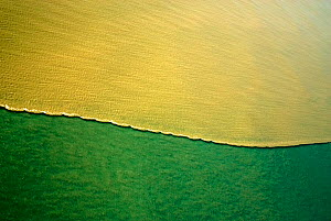 Aerial view of mud line, Papua New Guinea, September 2007  -  Mark Brownlow