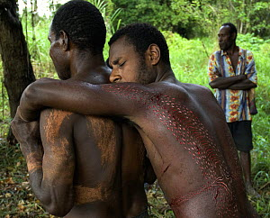 Young man carried along after initiation ceremony in which his body is scared to represent being swallowed by a crocodile and re-born as a crocodile-man, Papua New Guinea, September 2007 - Mark Brownlow