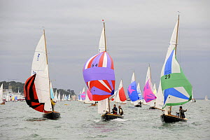 """Victory fleet including """"Zest"""", """"Zelia"""" and """"Simba"""" racing at Cowes Week, August 2009. - Rick Tomlinson"""