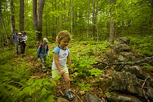 Family explores a woodland trail at Highland Farm, York, Maine, USA. Model Released. May 2008  -  Jerry Monkman