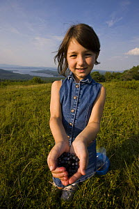A young girl showing off the Blueberries she picked on a hilltop in Alton, New Hampshire, USA. Model Released. July 2008  -  Jerry Monkman