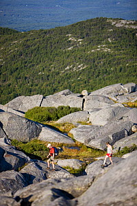 Hikers near the summit of Mount Monadnock, Monadnock State Park, New Hampshire, USA, August 2008  -  Jerry Monkman
