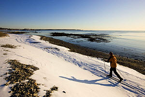 A man cross country skiing along the coast at Odiorne Point State Park in Rye, New Hampshire, USA. Model Released. winter 2007  -  Jerry Monkman