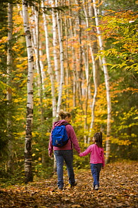 Woman and child (aged 6) walking through woodlands in autumn, Lincoln's Woods Trail, White Mountains National Forest, New Hampshire, USA. Model Released. October 2007  -  Jerry Monkman