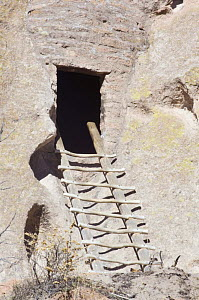 Ladder leading to cliff dwelling of the ancient native american Pueblo people, Bandelier National Monument, New Mexico, USA, February 2009  -  Rob Tilley