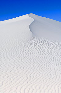 White sand dunes against blue sky, White Sands National Park, New Mexico, USA, February 2009 - Rob Tilley