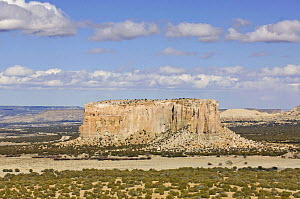 Enchanted Mesa, sandstone butte that was home to the native american Acoma tribe people, Acoma Pueblo, New Mexico, USA, February 2009  -  Rob Tilley