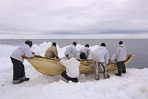 An Inupiaq whaling crew prepare to paddle their seal skin boat / umiak, in an open lead in the Chukchi Sea, during spring whaling season, off the Arctic coastal village of Point Hope, Alaska, May 2008 - Steven Kazlowski