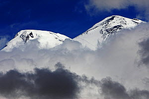 Mount Elbrus, the highest mountain in Europe (5,642m) surrounded by clouds, seen from Mount Cheget in the morning, Caucasus, Russia, June 2008  -  Wild Wonders of Europe / Schandy