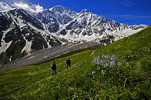 Hikers walking along a path with Mount Donguzorun (4,448m) in the distance, Caucasus, Russia, June 2008 - Wild Wonders of Europe / Schandy