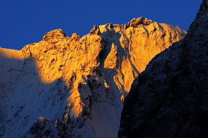 First light on snow covered mountain near Dombay, Teberdinsky biosphere reserve, Caucasus, Russia, July 2008  -  Wild Wonders of Europe / Schandy