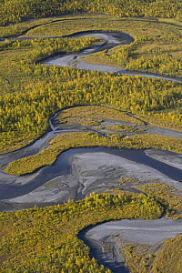 Aerial view of the Laitaure delta, Sarek National Park, Laponia World Heritage Site, Lapland, Sweden, September 2008  -  Wild Wonders of Europe / Cairns