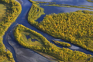 Aerial view of the Laitaure delta, Sarek National Park, Laponia World Heritage Site, Lapland, Sweden, September 2008 WWE BOOK. WWE INDOOR EXHIBITION - Wild Wonders of Europe / Cairns