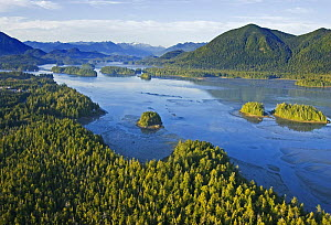 Aerial view of Browing Passage, Clayoquot Sound, Vancouver Island, British Columbia, Canada - Matthew Maran