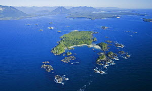 Aerial view of Bartlett Island, Clayoquot Sound, Vancouver Island, British Columbia, Canada  -  Matthew Maran