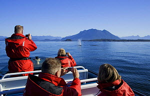 Tourists watching a Gray Whale {Eschrichtius robustus} at Clayoquot Sound, Vancouver Island, British Columbia, Canada  -  Matthew Maran