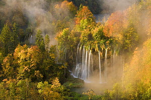 Veliki Prstavci waterfalls close to Gradinsko lake at dawn, Upper Lakes, Plitvice Lakes NP, Croatia, October 2008 WWE BOOK. WWE OUTDOOR EXHIBITION PRESS IMAGE. WINNER - Wild Places category of Wildlif...  -  Wild Wonders of Europe / Biancar