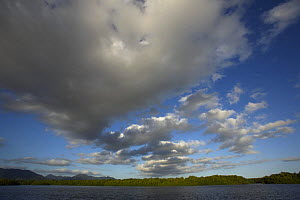 Cumulus cloud formations over the Caroni Swamp in the late afternoon, Caroni Bird Sanctuary, Trinidad, Trinidad and Tobago. February 2006  -  Tim Laman