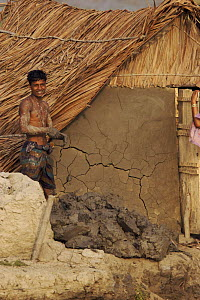 Man repairing home in the village of Chandpai on the Passur River, where shrimp fry fishing to supply shrimp for the shrimp ponds is the main industry. Villagers live in simple mud and thatch huts tha... - Tim Laman