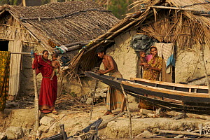Villagers the village of Chandpai on the Passur River, where shrimp fry fishing to supply shrimp for the shrimp ponds is the main industry. Villagers live in simple mud and thatch huts that are washed... - Tim Laman