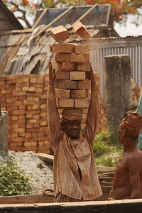 Men unloading bricks from a boat by carrying them on their head. Sundarbans, Khulna, Bangladesh, April 2006 - Tim Laman