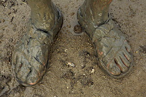 Photographer's muddy feet from walking through mangrove mud with a fiddler crab emerging from  hole between the feet, Bako National Park, Sarawak, Borneo, Malaysia. June 2006  -  Tim Laman
