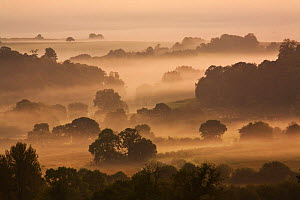 Dawn over rural countryside, view from Cadbury Castle, South Cadbury, Somerset, England, September 2008 - Guy Edwardes