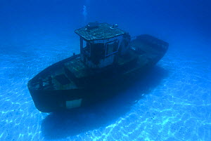Wreck of the ''Blue Plunder'' one day after being sunk off Nassau, Bahamas. August 2007.  -  Michael Pitts
