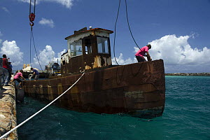 Tugboat wreck ''Blue Plunder'' being prepared for towing out to sea and sinking. Nassau, Bahamas. August 2007.  -  Michael Pitts