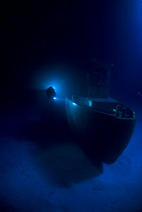 Diver at night on wreck of tugboat ''Blue Plunder'', off Nassau, Bahamas. January 2008.  -  Michael Pitts