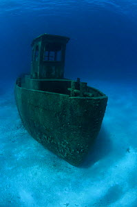 Wreck of tugboat ''Blue Plunder'', Nassau, Bahamas. One year after sinking. July 2008.  -  Michael Pitts