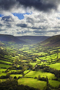 Vale of Ewyas, view over Capel-y-ffin and the valley of the Afon Honddu, Black Mountains, Brecon Beacons National Park, Powys, Wales, UK, October 2008  -  Guy Edwardes