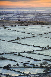 View of frost covered fields and hedgerows in the Preseli Hills, Pembrokeshire Coast National Park, Pembrokeshire, Wales, UK, November 2008  -  Guy Edwardes