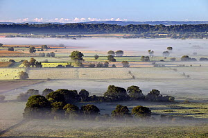 View across the Somerset Levels at dawn from Walton Hill, near Street, Somerset, England, September 2007 - Guy Edwardes