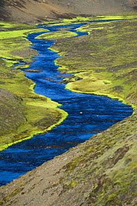 Riverine landscape on the way to Landmannalaugar, south Iceland. July 2008  -  Inaki Relanzon