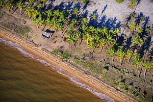 Aerial view of coast with palm trees and fisherman's hut around Betsiboka river, Majunga area, North-west Madagascar, November 2008  -  Inaki Relanzon